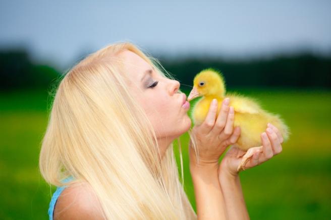 Quinn Martin / (Shutterstock.com)